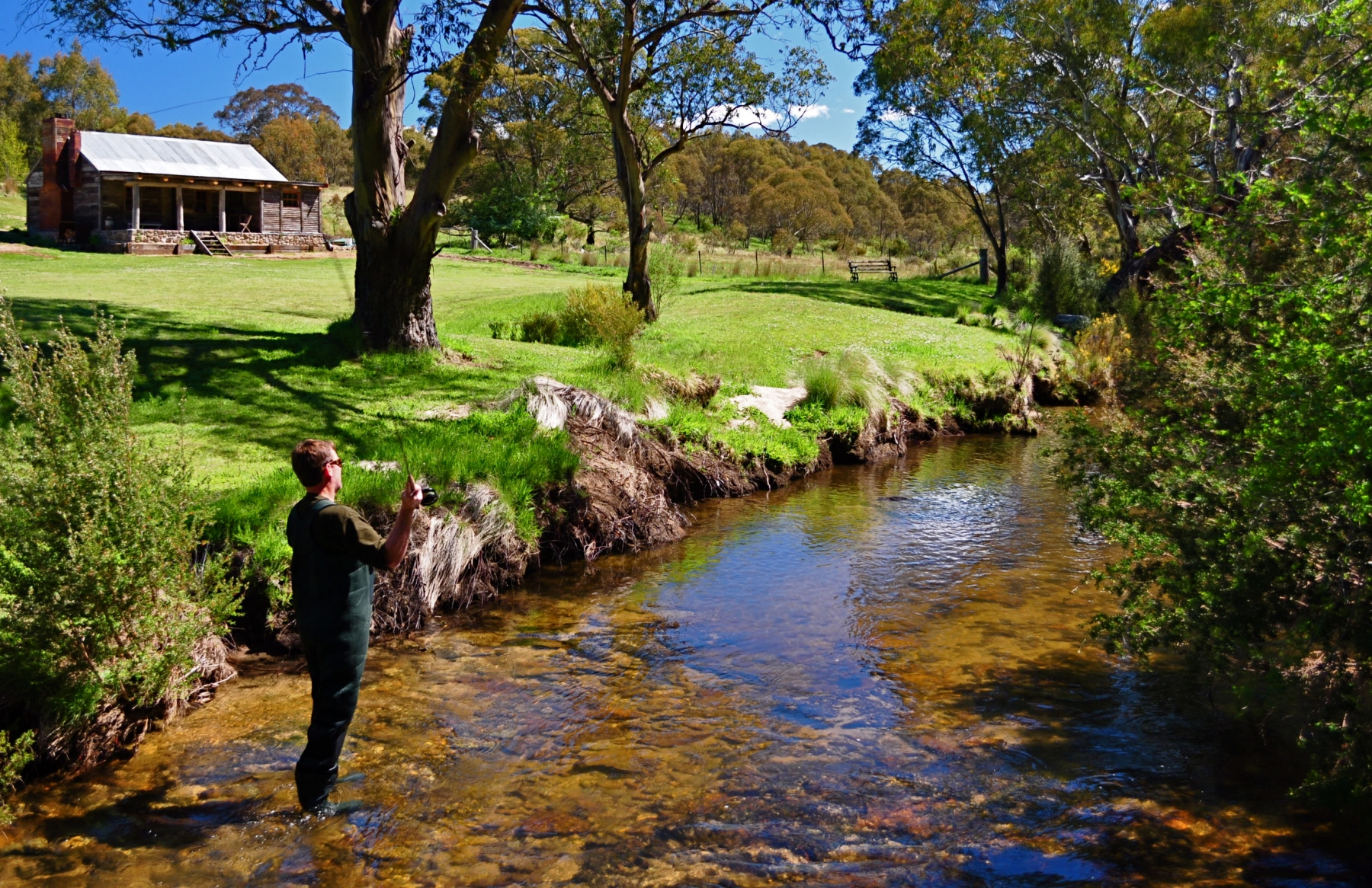 Summertime flyfishing for trout at Moonbah River Hut