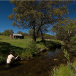 Moonbah Hut fly fishing below River Hut